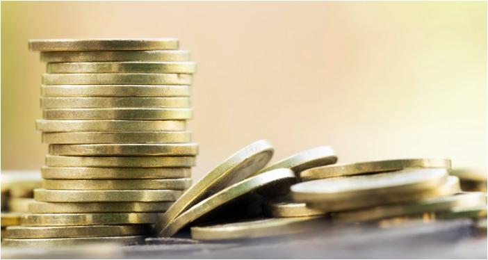 varanida-dual-token-economy
